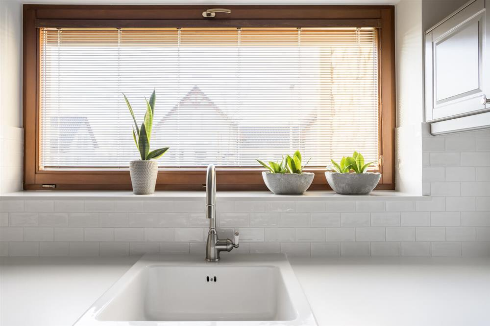 sink and window