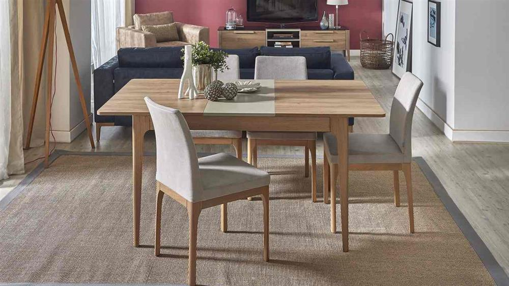 Living Room Dining Room Combo Ideas With Tricks Dogtas